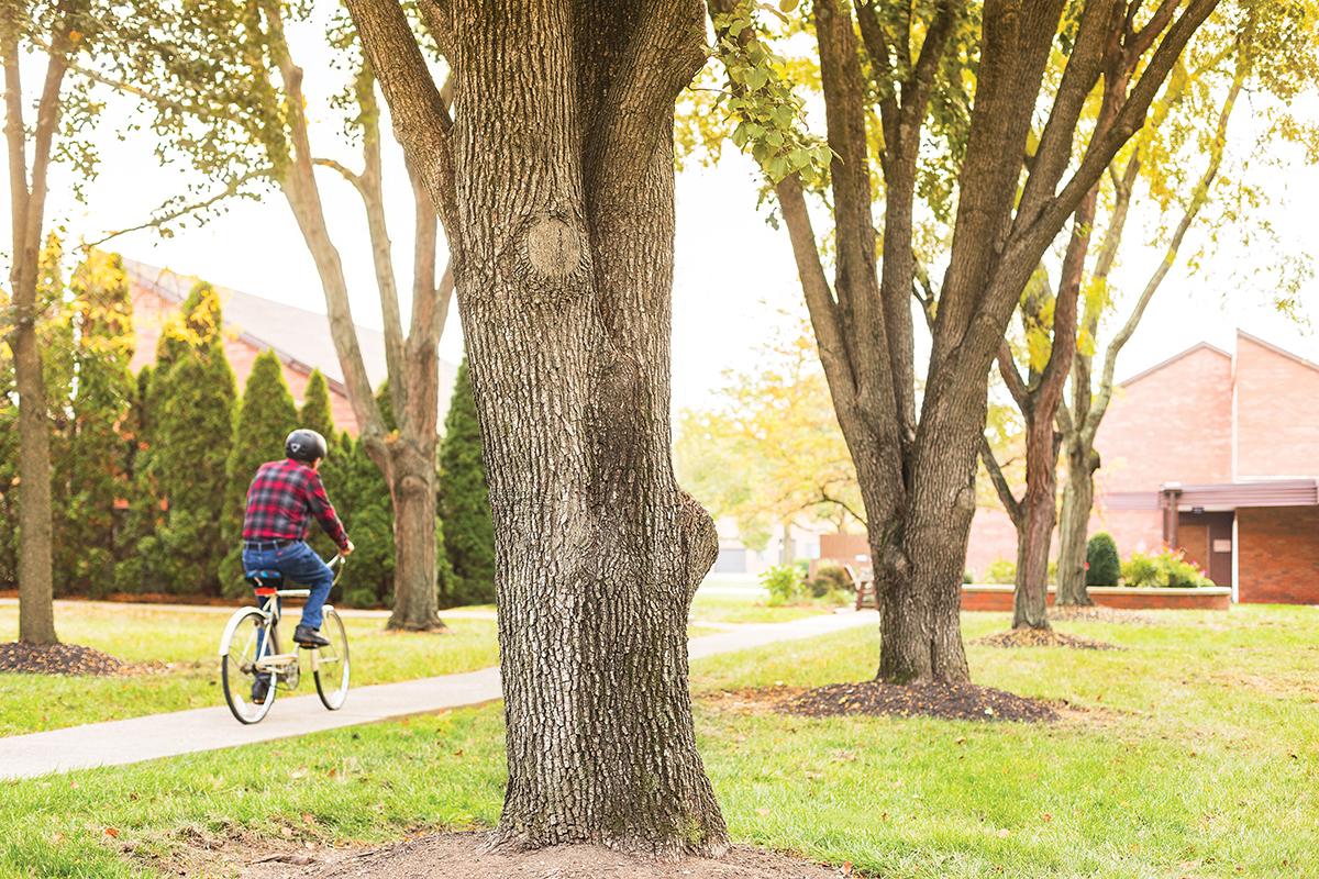 Bike around campus   Westerwood
