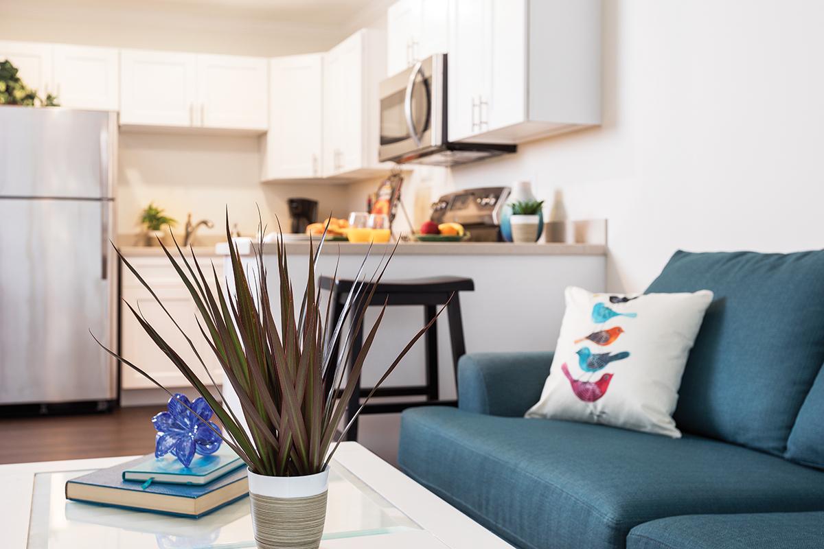 Comfy living rooms   Westerwood