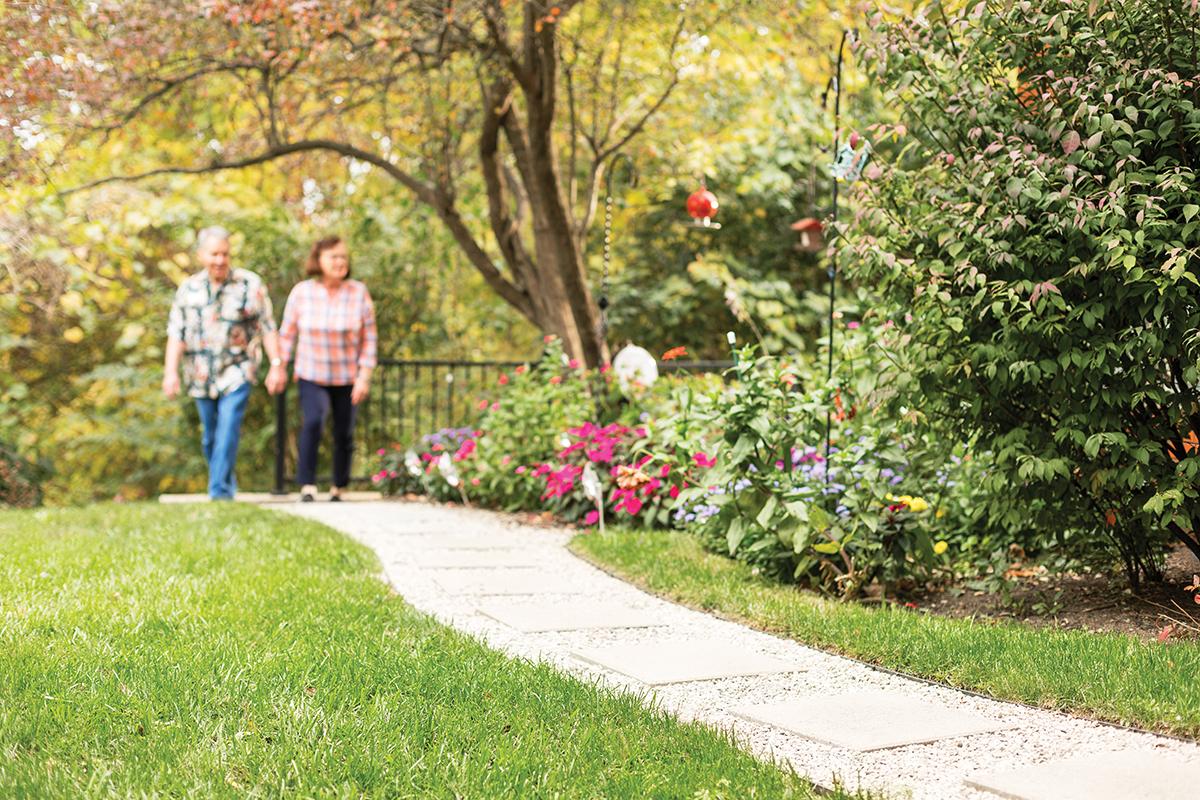 Walking paths   Westerwood