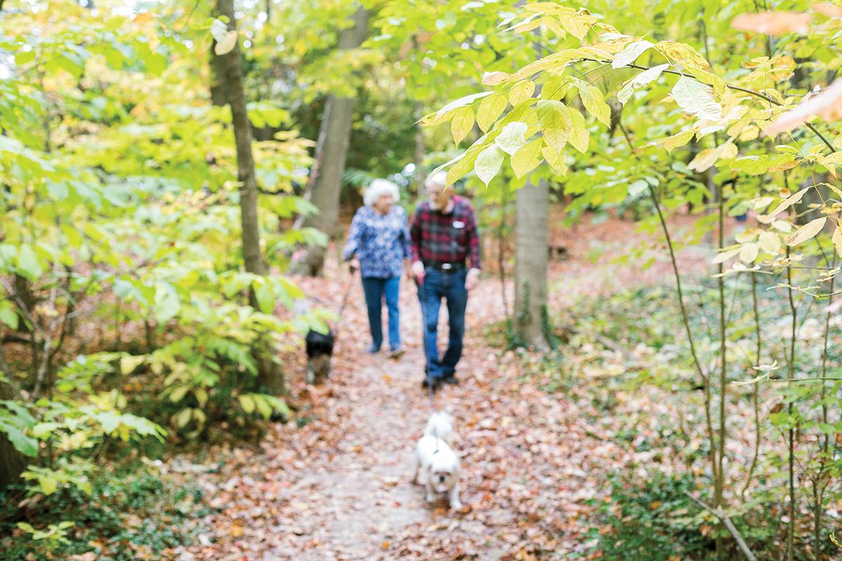 Walking trails   Westerwood