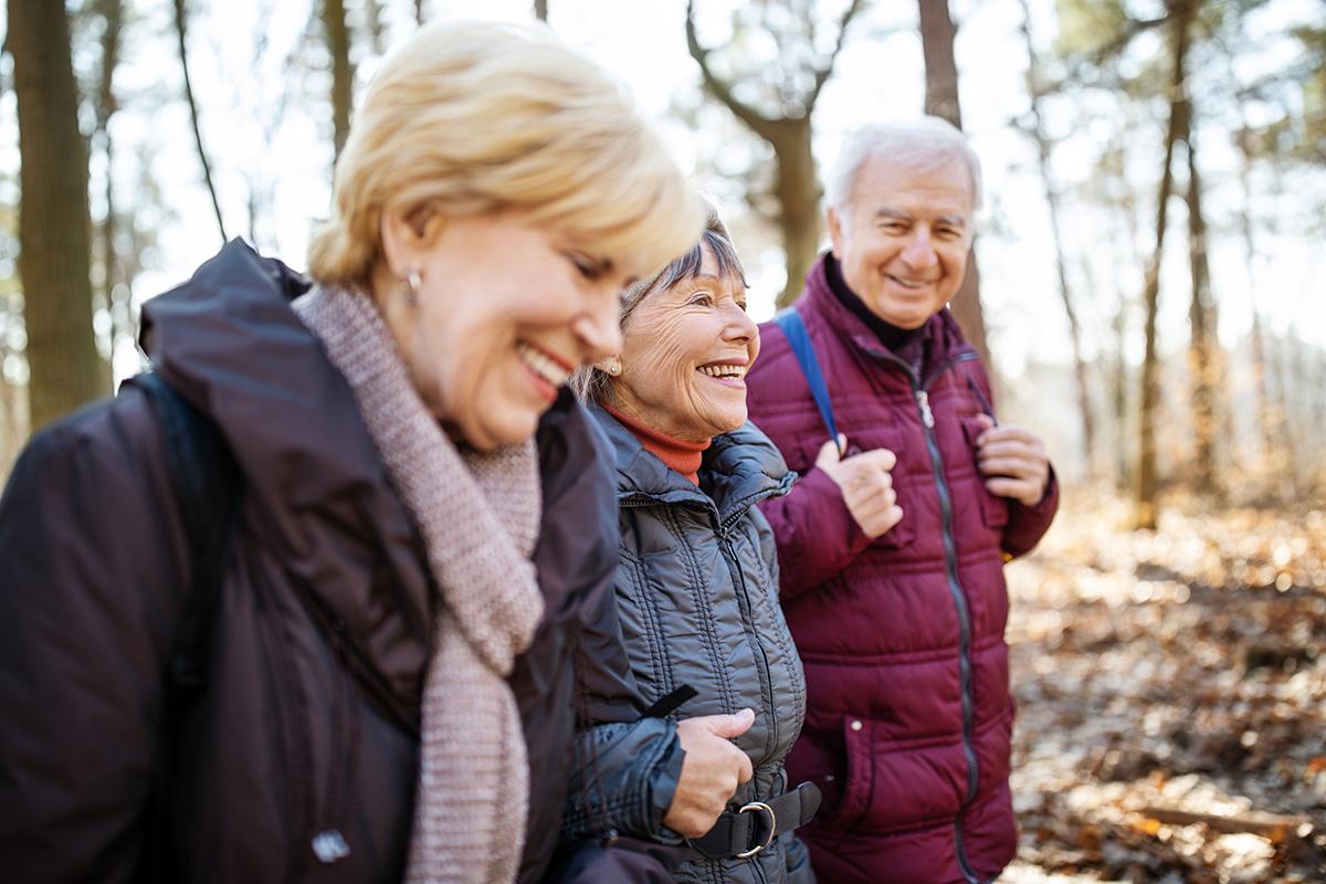 Walk in Friendship Woods   Westerwood