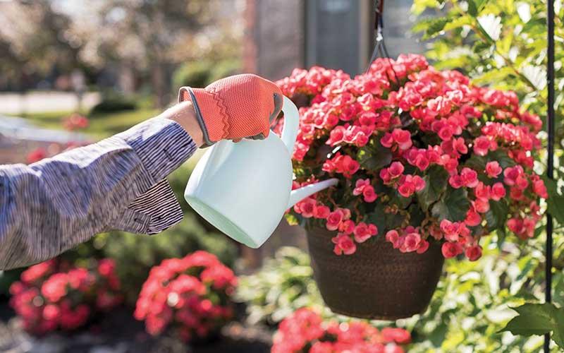 Gardening | Westerwood