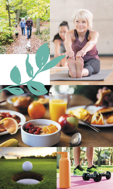 Wellness | Westerwood